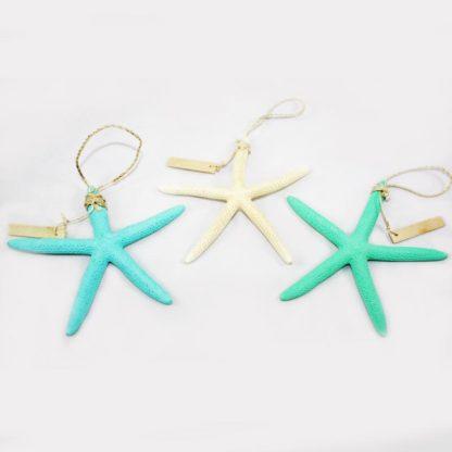 MultiColor Starfish
