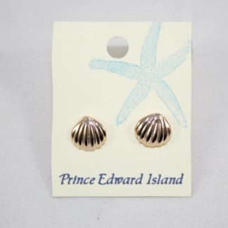 Shell Gold Earring Small