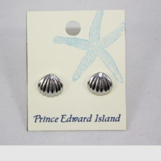 Silver Shell Earring Small